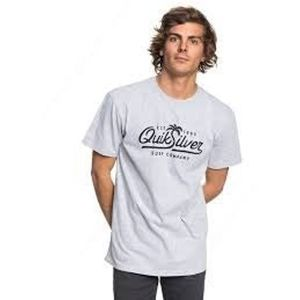 "QUIKSILVER ""Or Palm Script"" Mens Grey Gray Tee L"